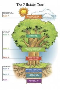 7-habits-tree-682x1024