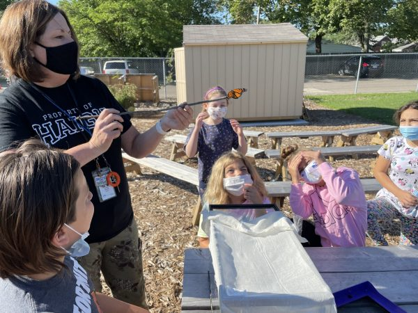 A Haigh Elementary teacher holds a stick with a live butterfly on the end while students watch during an outdoor lesson.